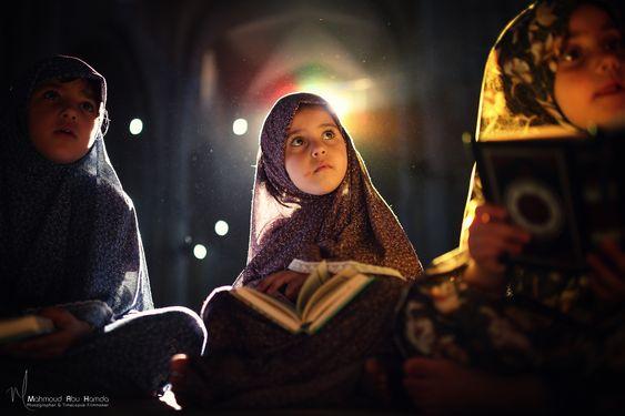 محسن ذوالفقاری